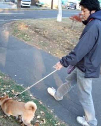 関口店長の散歩画像